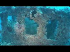 Wreck Diving Belize - nice intro to wreck diving if you've never done it