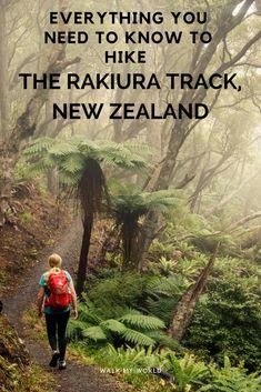 Everything you need to know to hike the Rakiura Track, Stewart Island, New Zealand.
