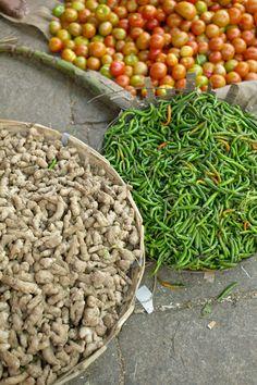 Curry de poulet au lait de coco du Kerala – Kojhi stew (avec vidéo)