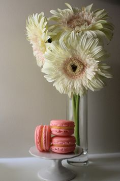 Two of my Favorite Things, Gerber Daisies and Macarons