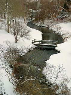 Town Brook, Plymouth, Massachusetts; photo by .Janice Drew