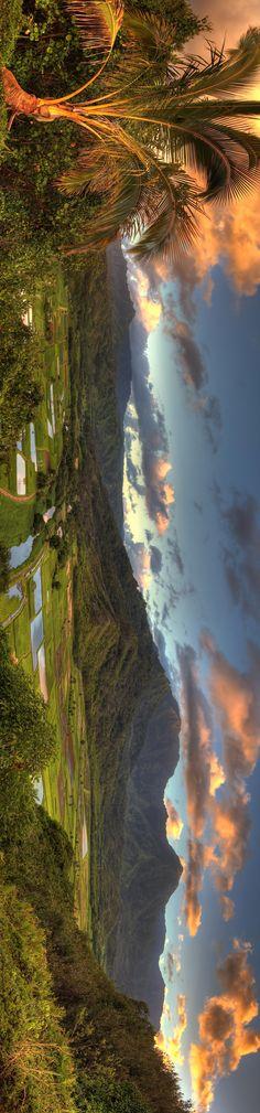 Hanalei Valley Lookout Panorama #hanalei #kauai