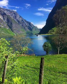 Sommerdag ved fjorden  #brilliantnorway#globalcapture#norway2day#dreamynorway#worlds_beautiful_photos#wu_norway#travel_drops#igscglobal#igscandinavia#earth_magic#ig_myshot#norgefoto#splendid_shotz#loves_landscape#bns_waters#loves_norway#landscapesofnorway#dreamchasersnorway#bestmountainartists#bestofnorway#essence_of_norway#highlightsnorway#mittvestland#worldplaces#norway#ig_eurasia#show_us_nature#ig_countryside#face_of_the_earth#ilovenorway