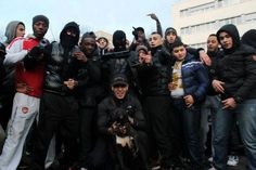 Image result for youth gangs