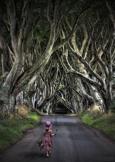 Intense Feelings I Bet When U Walk Down This Street...Lol... Amazing Tree Tunnel in Northern Ireland