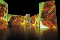 Viaggio nel mondo di Vincent Van Gogh, tra le sue pennellate violente e materiche, i suoi colori vibranti e le sue emozioni, tormenti e ossessioni. Con oltre