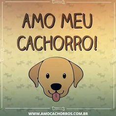 EU TAMBÉM!!! ❤❤ #cachorro #cachorroterapia #cachorroetudodebom #caopanheiro #amocachorro #petmeupet #petshop #luludapomerania #bulldog #labrador #golden #schnauzer #shihtzu #lhasaapso #pug #viralata