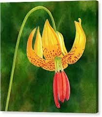 Image result for modern paintings of tiger lilies