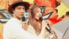 Netizens think Red Velvet's Irene and Park Bo Gum make a cute couple? | allkpop.com