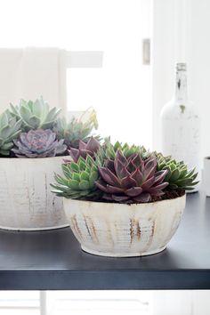 These are such pretty arrangements! Groen van bij ons - Bloemen en planten