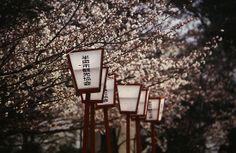 Japanese street lights