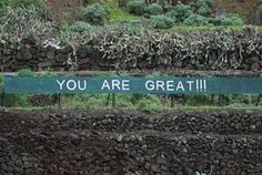 A N O N I M A N: You are great !!!