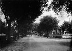 Bintaran. 1925 Yogyakarta, Old Pictures, Indie, Country Roads, History, Street, Photography, Outdoor, Outdoors