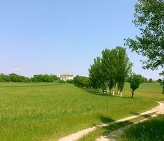 Aszofo, Balaton, Hungary Hungary, Golf Courses, Beautiful Places, Sport, Nature, Travel, Deporte, Naturaleza, Viajes