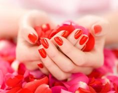 Anne: pedicure or manicure gift card to soho nail spa in cary