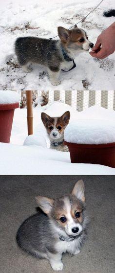 Snow adventures.