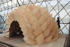 Dragon Skin is an experimental structure that explores the use of post-formable plywood.