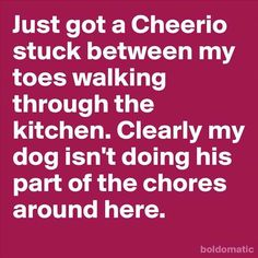funny quote of the day