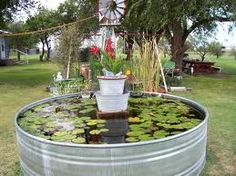 This is cute. I want a pond w/Fish!