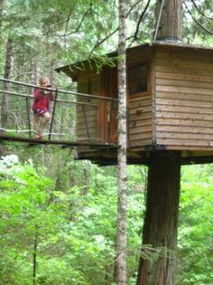 sleeping in a treehouse, what fun, got great reviews  Lily Pad treehouse  Cave Junction OR