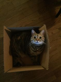"""""""I can only assume this is for me..."""" http://ift.tt/2jVV0P0"""