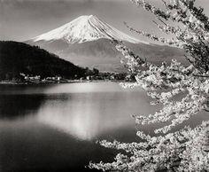 Koyo Okada UNTITLED (FUJIYAMA, CHERRY BLOSSOM) Gelatin Silver Print, Cherry Blossom, Clouds, Japan, Mountains, Artwork, Travel, Photography, Art Work