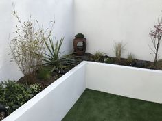 How To Plan, Plants, Flora, Plant, Planting