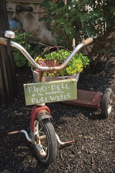 Tricycle garden art
