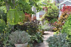 Lush garden with hanging garden elements