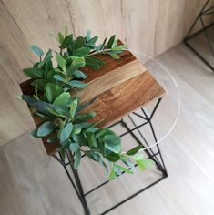 Obręcz z zielenią, koło z liści eukaliptusa 40 cm Planter Pots