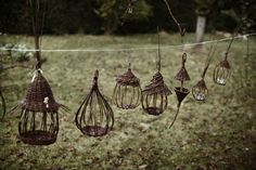 Various bird feeders. Lovely!