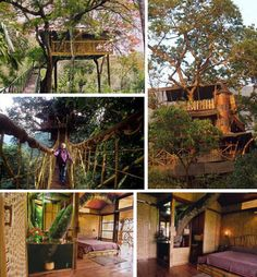 These two relaxed yet highly functional tree houses are part of the Finca Bella Vista tree house community in the rainforest of Costa Rica. The community is home to ecologically minded adventurers wishing to preserve the 300 acres of rainforest surrounding their homes. Its residents enjoy hydroelectric and solar power and wi-fi internet, and have biodigestors to process waste. Dozens of land parcels are still available for future residents to design and build their own tree houses.