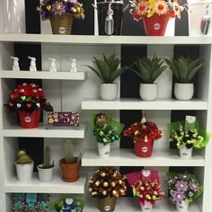 Doing some rearranging in Adelaide today #edibleblooms #ediblebloomsADL #chocolatebouquets