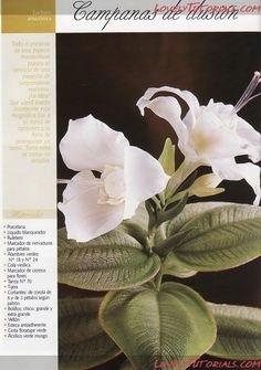 Эухарис (Амазонская лилия) -Gumpaste (fondant, polymer clay) Eucharis amazonica (Amazon Lily)making tutorial