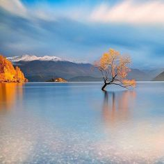 Lake Wakana,New Zealand photo by @mattgreeniwd - Earth Porn