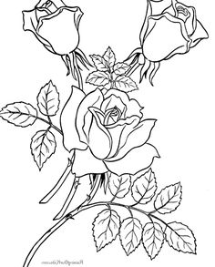 Superb Print Your Own Coloring Book 94 I have download