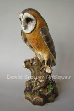 A Meissen model of a Barn Owl (Germany)