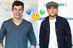 Niall Horan and Shawn Mendes are both gorgeous guitar players who have stolen our hearts, but which one are you really meant to be with?
