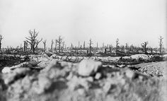 World War I in Photos: The Western Front, Part I - The Atlantic; Marne battlefield; http://www.theatlantic.com/static/infocus/wwi/westernfront1/