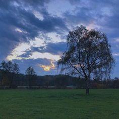 Nach einer Woche im Dauergrau wäre ich tatsächlich schon für einen solchen Lichtblick dankbar. . . . . . #4moresunrises #nofilter #latergram #theresalwaysthesun #november #greyness #cloudporn #insta_sky_lovers #skyporn #crazyclouds #cloud_skye #instacloud #sunrays #epicsky #autumncolours #skypainters #nofilterneeded #iskyhub #cloudstagram #babyitscoldoutside #novemberwetter #dauergrau #schietwetter #lichtblick #filterlos #ziehteuchwarman