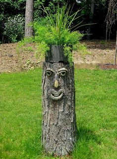 Told my husband to leave a stump from all the trees he had cut down due to disease. He wanted to know what I was going to with it, I didn't know either, but her…