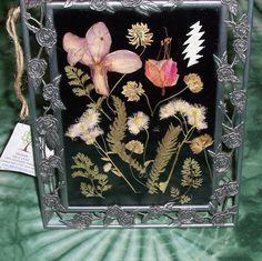 Pressed Flower Art Frame