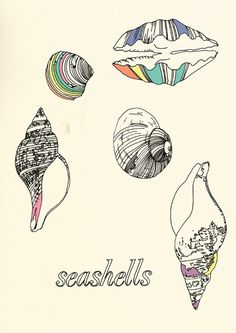 maybe a way to touch up my conch shell tattoo on my foot?