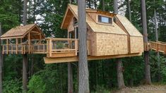 Lifted Lodge in Oregon — Nelson Treehouse Treehouse Builders, Treehouse Ideas, Cool Tree Houses, Tree House Designs, Cedar Shingles, Cabins In The Woods, In The Tree, Little Houses, Bay Window