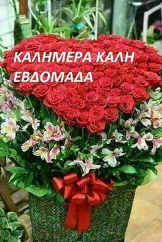 Good Morning, Plants, Beautiful, Buen Dia, Bonjour, Plant, Good Morning Wishes, Planets