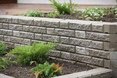 Ideakuvat   Rudus Stepping Stones, Outdoor Decor, Plants, Home Decor, Stair Risers, Decoration Home, Room Decor, Plant, Home Interior Design