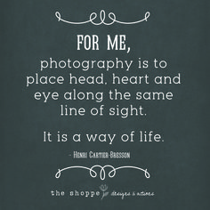 True Statements ~ Quotes For Photographers ~ Photography Quotes ~ Photographer Inspiration Photographer Quotes
