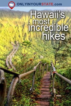 Travel | Hawaii | Attractions | USA | Hidden Gems | Things To Do | Day Trips | Places To Visit | Hiking Spots | Trails | Scenic Hikes | Outdoor | Adventure | Easy Hikes | Oahu | Natural Wonders | Explore | Koko Head Crater | Nature | Beach Trail | Big Island | Oahu | Waterfalls | Sliding Sands | Stairway To Heaven
