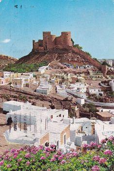 ALMERIA ALCAZABA Y LA CHANCA (ESCRITA) (Postales - España - Andalucía Moderna (desde 1940) - Almería)