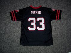 Michael Turner Atlanta Falcons NFL Team Apparel Replica Youth Jersey-L (14-16) #AtlantaFalcons